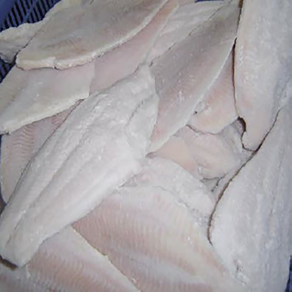 Frozen catfish fillets