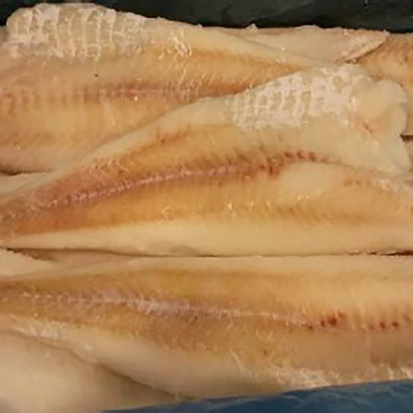 frozen cod fish fillets
