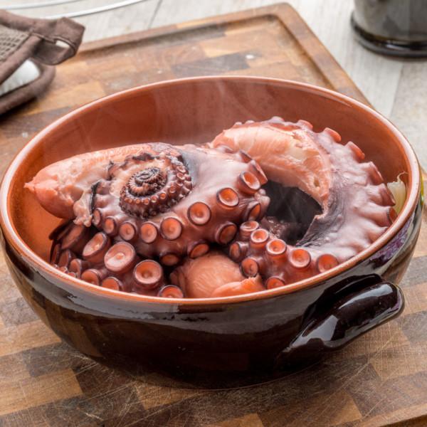 Octopus (Portugal)